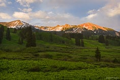 Avery Peak glows in sunset light beyond fields of corn lilies outside of Gothic, Colorado.