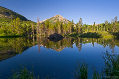 A beaver den mimics the shape of a reflecting mountain peak.