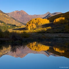 The Ruby Range and a grove of golden aspen trees are reflected in a calm beaver pond outside of Crested Butte, Colorado
