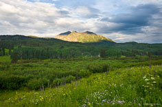 Beautiful green valley with East Beckwith Mountain lit by early morning sunshine outside of Crested Butte, Colorado.