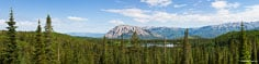 Panoramic image of Lost Lake Slough nestled in the pines beneath Marcellina Mountain and the West Elk Mountain range outside of Crested Butte, Colorado.