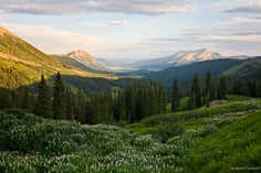 A view down Washington Gulch as the evening light bathes the mountains around Crested Butte in Colorado.