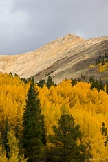 Sunlight on Irvin Peak with golden aspens in the foreground outside of Buena Vista, Colorado.