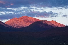 Mount Yale glows in the pink light of dawn in the San Isabel National Forest outside of Buena Vista, Colorado.