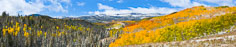 A panoramic view of Flat Top Mountain beyond a valley filled with golden aspens in northwest Colorado the morning after a fresh snow.