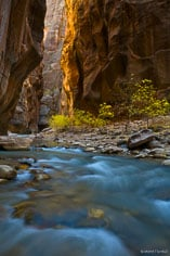 The North Fork of the Virgin River flows through the red canyon walls of the Narrows at Zion National Park in Utah.