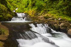 Sweet Creek tumbles down a series of cascades known as Punchbowl Canyon Falls outside of Mapleton, Oregon.