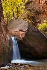 Fall foliage stands above a waterfall on Kanarra Creek outside of Kanarraville, Utah.