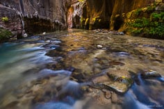 Sunlight shines from around the corner and is reflected in the river in the Virgin Narrows of Zion National Park in Utah.