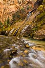 A small stream flows down a rock wall into the North Fork of the Virgin River in the Narrows at Zion National Park, Utah.