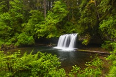 Upper Butte Creek Falls drops gracefully over a wide undercut ledge into a large pool surrounded with greenery in the Santiam State Forest in northwest Oregon.