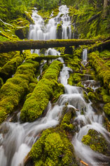 Upper Proxy Falls cascades over a rocky ledge and twists and turns its way through a jumble of vibrant green moss-covered rocks and logs in the Willamette National Forest outside of Sisters, Oregon.