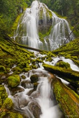 Proxy Falls spreads out and drops in curtains over two hundred feet before tumbling through moss covered logs and rocks in the  Willamette National Forest in Oregon.