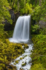 Warm Springs Falls plummets over fifty feet into a vibrant green mossy amphitheater in the Umpqua National Forest in Oregon.