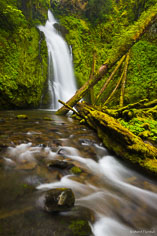 Hemlock Falls twists and turns down a rugged chasm and drops into a lush green gorge littered with mossy fallen trees in the Umpqua National Forest in Oregon.
