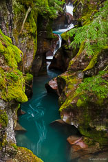 The aqua-colored water of Avalanche Creek twists its way through a red rock crevice covered in moss and ferns in Glacier National Park in Montana.