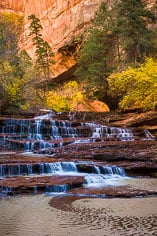 Left Fork Creek cascades down the red rock steps of Archangel Falls in a canyon punctuated by golden fall color in Zion National Park, Utah.