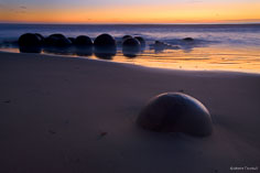 The golden light of dawn silhouettes the unusual Moeraki Boulders on the South Island of New Zealand.