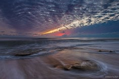The horizon glows in pink dawn light over a rocky beach at Washington Oaks Gardens State Park, Florida.