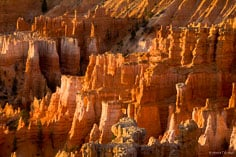 The early morning sun causes the spires to glow in Bryce Canyon National Park in Utah.