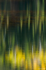 A rippled lake reflects the sun shining on pine and aspen trees at Woods Lake in southern Colorado.