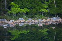 Trees with bright green foliage are reflected in Jordan Pond at Acadia National Park in Maine.