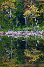 A shoreline covered in a colorful collection of colors is reflected in Jordan Pond at Acadia National Park in Maine.