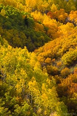 A mountainside carpeted with aspen trees and scrub oak glows with a variety of autumn colors outside of Oak Creek in northwestern Colorado.