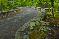A carriage road curves its way over the ornate Waterfall Bridge in Acadia National Park, Maine.