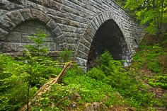 Spring foliage surrounds the the interesting arches of the Hemlock Bridge in Acadia National Park, Maine.