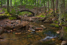 The gentle flow of Hadlock Brook flows under the Hadlock Bridge in Acadia National Park, Maine.