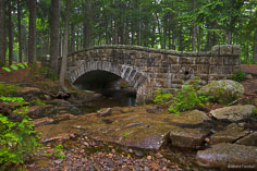 The Hadlock Bridge is nestled in the green forest in Acadia National Park, Maine.