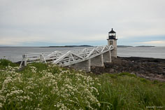 Marshall Point Light is seen behind spring flowers outside of Port Clyde, Maine.