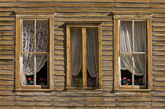 Weathered windows decorated with faded artificial flowers in the ghost town of St. Elmo in central Colorado.